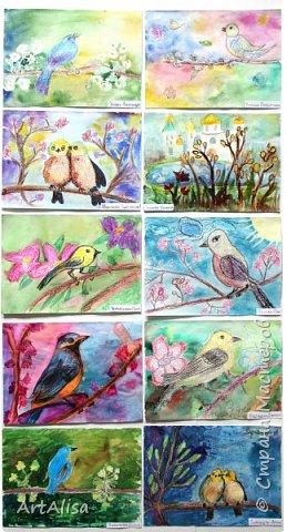 Весенние птицы и цветы! фото 3