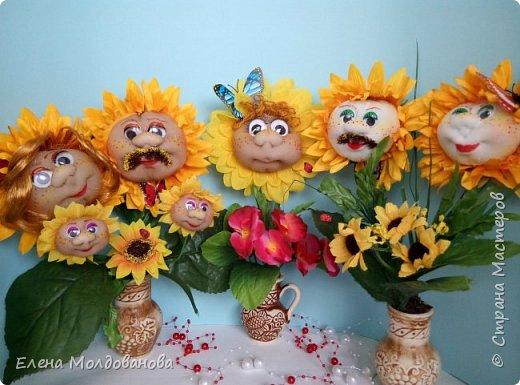 Сезон цветения подсолнухов открыт фото 8