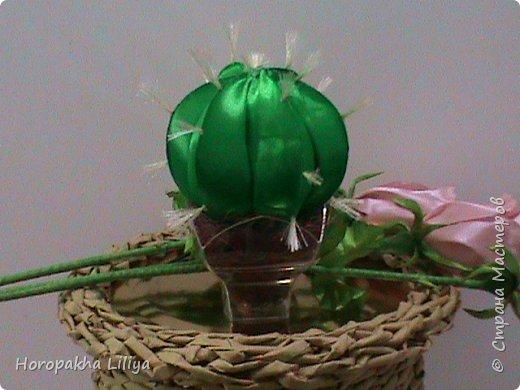 Ароматический вазончик - кактус канзаши