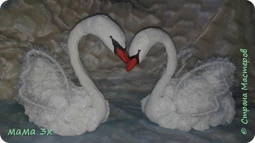 Свадьба свадьба..... Лебеди мои первые и пока единственная пара   фото 1