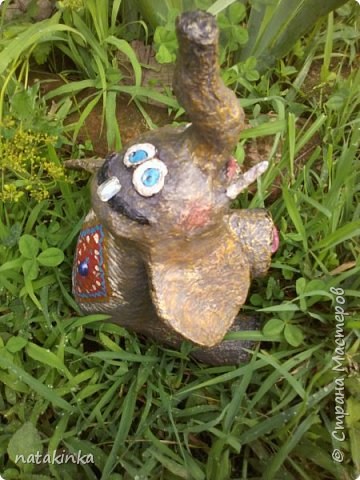 утро, на траве роса фото 1