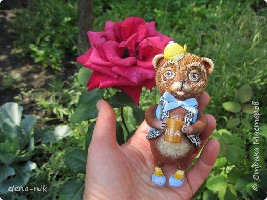 Мишка косолапый. фото 5