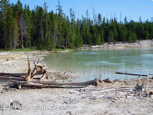 Продолжаю делится впечатлениями от поездки в Йе́ллоустон (Yellowstone National Park)— международный биосферный заповедник, объект Всемирного Наследия ЮНЕСКО, первый в мире национальный парк (основан 1 марта 1872 года). Находится в США, на территории штатов Вайоминг, Монтана и Айдахо. Парк знаменит многочисленными гейзерами и другими геотермическими объектами, богатой живой природой, живописными ландшафтами. ( взято из Википедии ) Мы останавливались в кемпингах в палатках. Парк произвел на нас огромное впечатление. Очень хочется поделится с вами красотой которую я увидела. В один фоторепортаж трудно вместить все увиденное поэтому это уже шестой и будут еще...  Жалко что при загрузке фото уменьшаются и теряется качество поэтому смотрятся картинки плоско... но с этим я ничего поделать не могу. фото 26