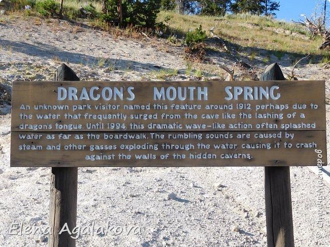Продолжаю делится впечатлениями от поездки в Йе́ллоустон (Yellowstone National Park)— международный биосферный заповедник, объект Всемирного Наследия ЮНЕСКО, первый в мире национальный парк (основан 1 марта 1872 года). Находится в США, на территории штатов Вайоминг, Монтана и Айдахо. Парк знаменит многочисленными гейзерами и другими геотермическими объектами, богатой живой природой, живописными ландшафтами. ( взято из Википедии ) Мы останавливались в кемпингах в палатках. Парк произвел на нас огромное впечатление. Очень хочется поделится с вами красотой которую я увидела. В один фоторепортаж трудно вместить все увиденное поэтому это уже шестой и будут еще...  Жалко что при загрузке фото уменьшаются и теряется качество поэтому смотрятся картинки плоско... но с этим я ничего поделать не могу. фото 28