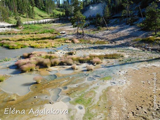 Продолжаю делится впечатлениями от поездки в Йе́ллоустон (Yellowstone National Park)— международный биосферный заповедник, объект Всемирного Наследия ЮНЕСКО, первый в мире национальный парк (основан 1 марта 1872 года). Находится в США, на территории штатов Вайоминг, Монтана и Айдахо. Парк знаменит многочисленными гейзерами и другими геотермическими объектами, богатой живой природой, живописными ландшафтами. ( взято из Википедии ) Мы останавливались в кемпингах в палатках. Парк произвел на нас огромное впечатление. Очень хочется поделится с вами красотой которую я увидела. В один фоторепортаж трудно вместить все увиденное поэтому это уже шестой и будут еще...  Жалко что при загрузке фото уменьшаются и теряется качество поэтому смотрятся картинки плоско... но с этим я ничего поделать не могу. фото 32