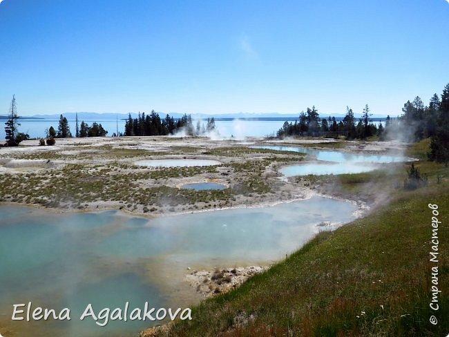 Продолжаю делится впечатлениями от поездки в Йе́ллоустон (Yellowstone National Park)— международный биосферный заповедник, объект Всемирного Наследия ЮНЕСКО, первый в мире национальный парк (основан 1 марта 1872 года). Находится в США, на территории штатов Вайоминг, Монтана и Айдахо. Парк знаменит многочисленными гейзерами и другими геотермическими объектами, богатой живой природой, живописными ландшафтами. ( взято из Википедии ) Мы останавливались в кемпингах в палатках. Парк произвел на нас огромное впечатление. Очень хочется поделится с вами красотой которую я увидела. В один фоторепортаж трудно вместить все увиденное поэтому это уже шестой и будут еще...  Жалко что при загрузке фото уменьшаются и теряется качество поэтому смотрятся картинки плоско... но с этим я ничего поделать не могу. фото 5
