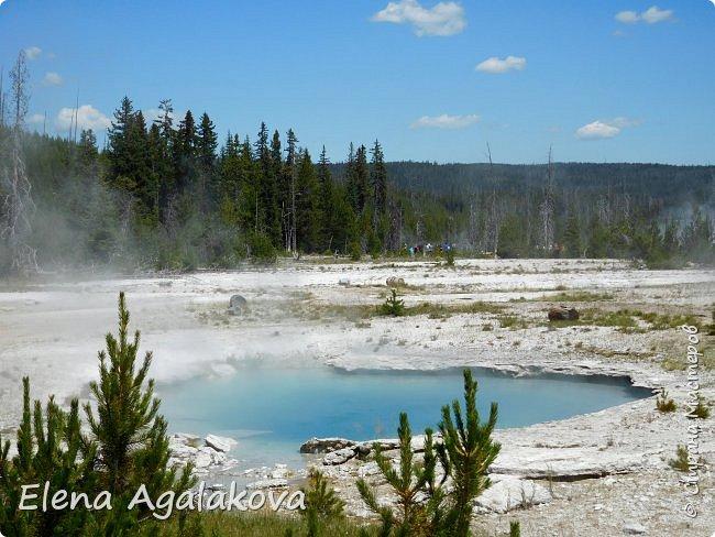 Продолжаю делится впечатлениями от поездки в Йе́ллоустон (Yellowstone National Park)— международный биосферный заповедник, объект Всемирного Наследия ЮНЕСКО, первый в мире национальный парк (основан 1 марта 1872 года). Находится в США, на территории штатов Вайоминг, Монтана и Айдахо. Парк знаменит многочисленными гейзерами и другими геотермическими объектами, богатой живой природой, живописными ландшафтами. ( взято из Википедии ) Мы останавливались в кемпингах в палатках. Парк произвел на нас огромное впечатление. Очень хочется поделится с вами красотой которую я увидела. В один фоторепортаж трудно вместить все увиденное поэтому это уже шестой и будут еще...  Жалко что при загрузке фото уменьшаются и теряется качество поэтому смотрятся картинки плоско... но с этим я ничего поделать не могу. фото 19
