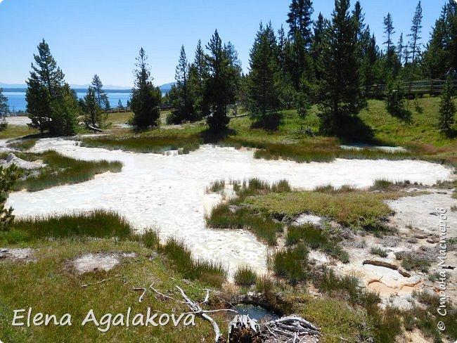 Продолжаю делится впечатлениями от поездки в Йе́ллоустон (Yellowstone National Park)— международный биосферный заповедник, объект Всемирного Наследия ЮНЕСКО, первый в мире национальный парк (основан 1 марта 1872 года). Находится в США, на территории штатов Вайоминг, Монтана и Айдахо. Парк знаменит многочисленными гейзерами и другими геотермическими объектами, богатой живой природой, живописными ландшафтами. ( взято из Википедии ) Мы останавливались в кемпингах в палатках. Парк произвел на нас огромное впечатление. Очень хочется поделится с вами красотой которую я увидела. В один фоторепортаж трудно вместить все увиденное поэтому это уже шестой и будут еще...  Жалко что при загрузке фото уменьшаются и теряется качество поэтому смотрятся картинки плоско... но с этим я ничего поделать не могу. фото 18