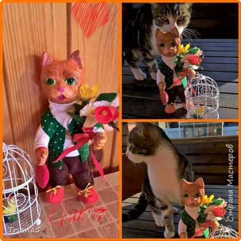 """Кот""""Поздравлялкин"""" фото 1"""
