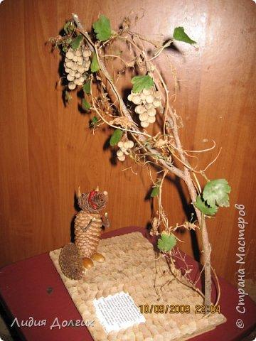Внуку в школу на праздник осени сделали вот такую иллюстрацию к басне Лиса и виноград фото 2