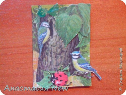 Всем привет! Сегодня я получила конвертик от мастерицы Анны Пудовкиной  http://stranamasterov.ru/user/386849. Большое тебе спасибо Аня! фото 5