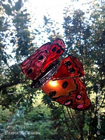 Объемные бабочки фото 4