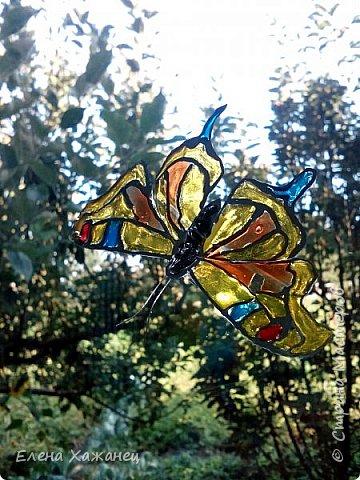Объемные бабочки фото 5