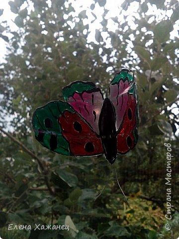 Объемные бабочки фото 7