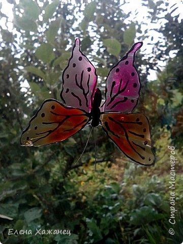Объемные бабочки фото 8