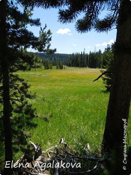 Продолжаю делится впечатлениями от поездки в Йе́ллоустон (Yellowstone National Park)— международный биосферный заповедник, объект Всемирного Наследия ЮНЕСКО, первый в мире национальный парк (основан 1 марта 1872 года). Находится в США, на территории штатов Вайоминг, Монтана и Айдахо. Парк знаменит многочисленными гейзерами и другими геотермическими объектами, богатой живой природой, живописными ландшафтами. ( взято из Википедии ) Мы останавливались в кемпингах в палатках. Парк произвел на нас огромное впечатление. Очень хочется поделится с вами красотой которую я увидела. В один фоторепортаж трудно вместить все увиденное поэтому это уже седьмой, последний.  Сегодня я расскажу про Гейзер Одинокая звезда (Lone Star Geyser )  Жалко что при загрузке фото уменьшаются и теряется качество поэтому смотрятся картинки плоско... но с этим я ничего поделать не могу. фото 25