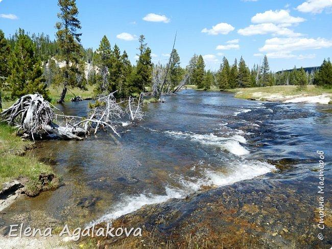 Продолжаю делится впечатлениями от поездки в Йе́ллоустон (Yellowstone National Park)— международный биосферный заповедник, объект Всемирного Наследия ЮНЕСКО, первый в мире национальный парк (основан 1 марта 1872 года). Находится в США, на территории штатов Вайоминг, Монтана и Айдахо. Парк знаменит многочисленными гейзерами и другими геотермическими объектами, богатой живой природой, живописными ландшафтами. ( взято из Википедии ) Мы останавливались в кемпингах в палатках. Парк произвел на нас огромное впечатление. Очень хочется поделится с вами красотой которую я увидела. В один фоторепортаж трудно вместить все увиденное поэтому это уже седьмой, последний.  Сегодня я расскажу про Гейзер Одинокая звезда (Lone Star Geyser )  Жалко что при загрузке фото уменьшаются и теряется качество поэтому смотрятся картинки плоско... но с этим я ничего поделать не могу. фото 7