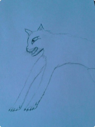 Добрый день! Сегодня я покажу вам мои новые рисунки. (Предупреждаю, что может быть плохое качество.)  Это ротвейлер.  фото 7
