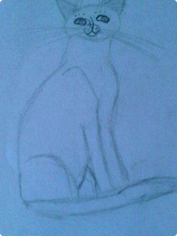 Добрый день! Сегодня я покажу вам мои новые рисунки. (Предупреждаю, что может быть плохое качество.)  Это ротвейлер.  фото 8