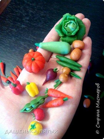 Приветствую всех заглянувших:-)А мы с дочей уже собрали урожай:-)теперь наши куклы и игрушки голодными точно не останутся.Моя Машуля и супы варит и жарит-парит овощи,и компотик куколкам даёт:-)И в сортеры играем,и считаем,и в грядки садим.В общем очень увлекательное занятие с овощами играть:-)главное ребёнок оценил:-) фото 1