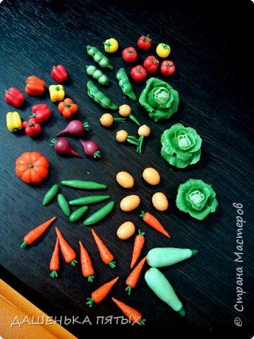 Приветствую всех заглянувших:-)А мы с дочей уже собрали урожай:-)теперь наши куклы и игрушки голодными точно не останутся.Моя Машуля и супы варит и жарит-парит овощи,и компотик куколкам даёт:-)И в сортеры играем,и считаем,и в грядки садим.В общем очень увлекательное занятие с овощами играть:-)главное ребёнок оценил:-) фото 2