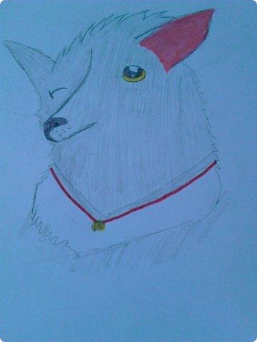 """Доброго времени суток! У меня еще немного рисуночков с:  Это Щербатая, целительница Грозового племени из серии книг """"Коты - воители"""". фото 6"""