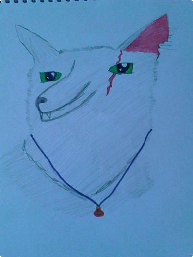 """Доброго времени суток! У меня еще немного рисуночков с:  Это Щербатая, целительница Грозового племени из серии книг """"Коты - воители"""". фото 5"""