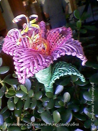 Аленький цветочек увидела на польском сайте.Высота  приблизительно 36 см.Бумага может быть окрашенная  или цветная.Подойдет для оформления подарка . украшение интерьера фото 14