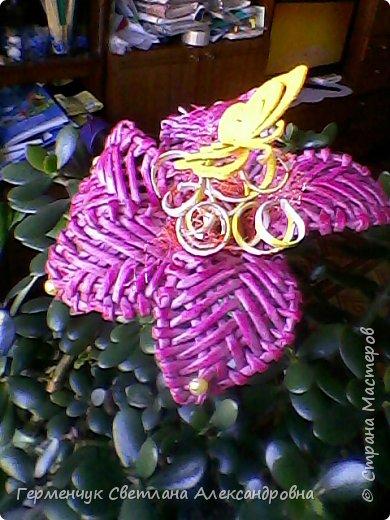 Аленький цветочек увидела на польском сайте.Высота  приблизительно 36 см.Бумага может быть окрашенная  или цветная.Подойдет для оформления подарка . украшение интерьера фото 15
