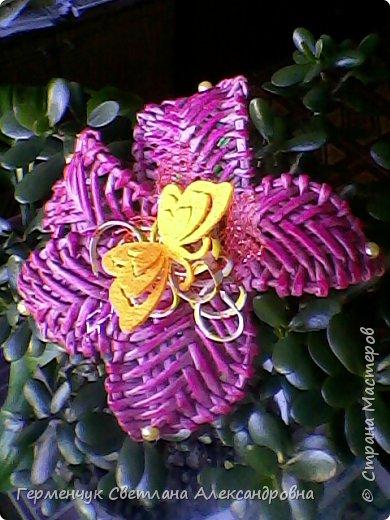 Аленький цветочек увидела на польском сайте.Высота  приблизительно 36 см.Бумага может быть окрашенная  или цветная.Подойдет для оформления подарка . украшение интерьера фото 1