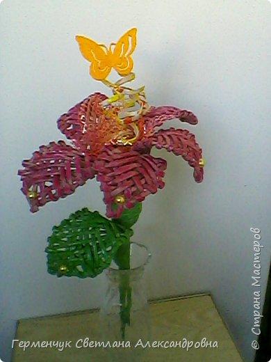 Аленький цветочек увидела на польском сайте.Высота  приблизительно 36 см.Бумага может быть окрашенная  или цветная.Подойдет для оформления подарка . украшение интерьера фото 17