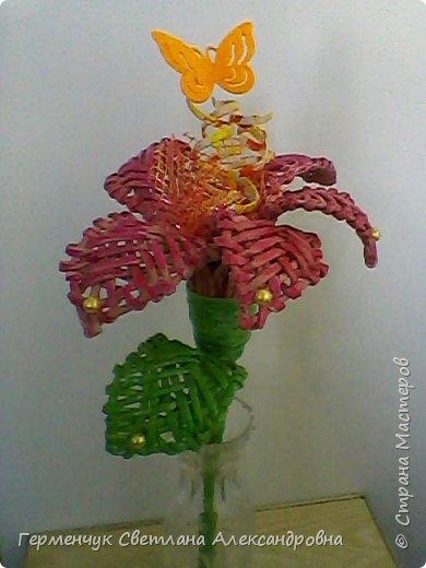 Аленький цветочек увидела на польском сайте.Высота  приблизительно 36 см.Бумага может быть окрашенная  или цветная.Подойдет для оформления подарка . украшение интерьера фото 25