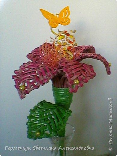 Аленький цветочек увидела на польском сайте.Высота  приблизительно 36 см.Бумага может быть окрашенная  или цветная.Подойдет для оформления подарка . украшение интерьера фото 27