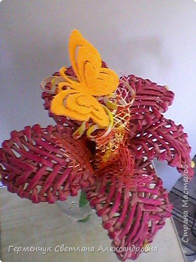 Аленький цветочек увидела на польском сайте.Высота  приблизительно 36 см.Бумага может быть окрашенная  или цветная.Подойдет для оформления подарка . украшение интерьера фото 28