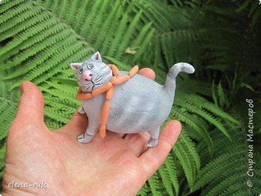 Принимайте новую партию котиков! фото 6