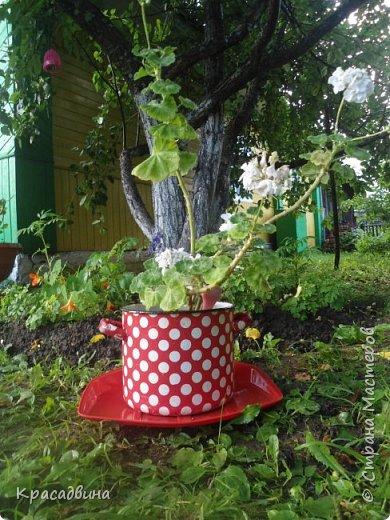 Вот такой симпатичный и яркий горшочек для цветов в сад получился из старой,проржавевшей кастрюльки,которая много лет валялась в сарае и была приготовлена на выброс))