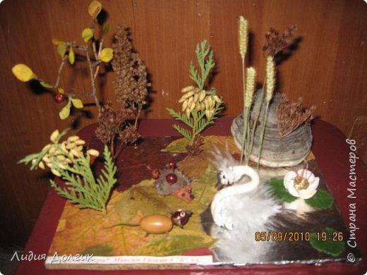 Эта ветка розочек сделана из берёзовой веточки, засушенных листочков и окрашенных гуашью шишек лиственницы. Всё наклеено на плотный картон. фото 4