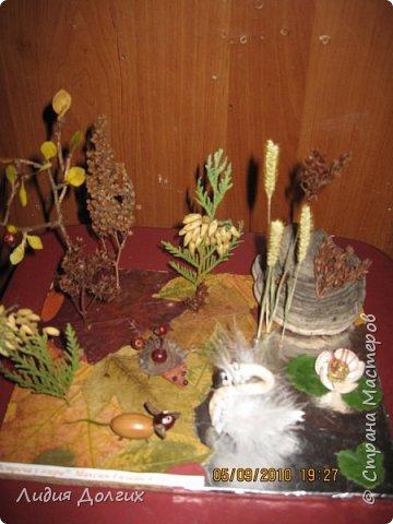 Эта ветка розочек сделана из берёзовой веточки, засушенных листочков и окрашенных гуашью шишек лиственницы. Всё наклеено на плотный картон. фото 6