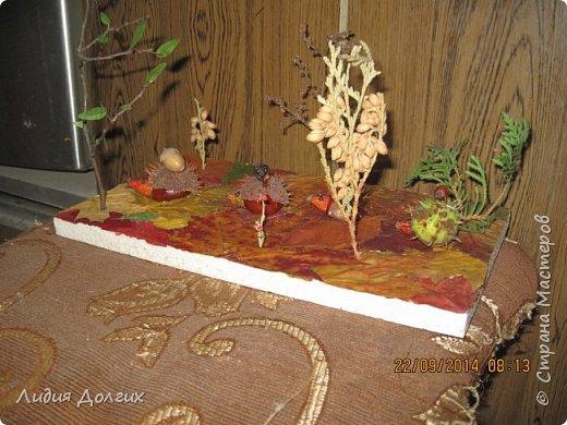 Эта ветка розочек сделана из берёзовой веточки, засушенных листочков и окрашенных гуашью шишек лиственницы. Всё наклеено на плотный картон. фото 7