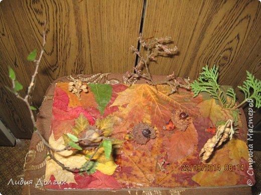Эта ветка розочек сделана из берёзовой веточки, засушенных листочков и окрашенных гуашью шишек лиственницы. Всё наклеено на плотный картон. фото 9