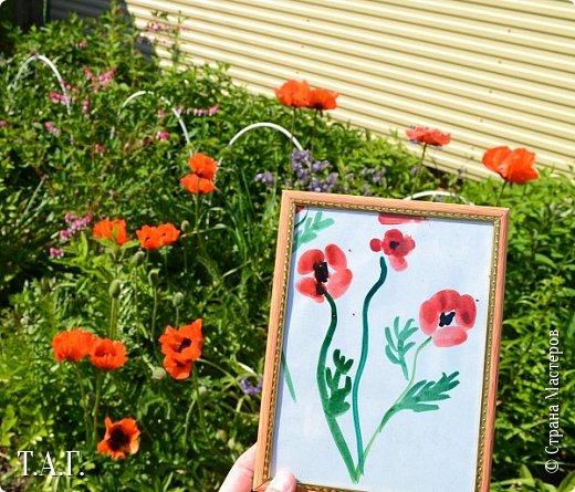 Великие живописцы черпают вдохновение от созерцания цветов - прекрасных творений природы. Внук как настоящий художник, сам смотрит и кошке показывает. фото 2