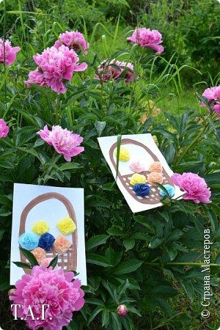 Великие живописцы черпают вдохновение от созерцания цветов - прекрасных творений природы. Внук как настоящий художник, сам смотрит и кошке показывает. фото 13