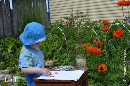 Великие живописцы черпают вдохновение от созерцания цветов - прекрасных творений природы. Внук как настоящий художник, сам смотрит и кошке показывает. фото 8