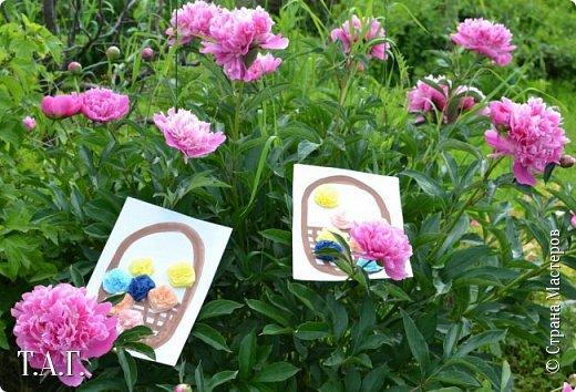 Великие живописцы черпают вдохновение от созерцания цветов - прекрасных творений природы. Внук как настоящий художник, сам смотрит и кошке показывает. фото 20