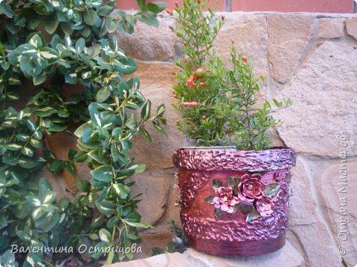 """Приветствую мастеров и мастериц нашей прекрасной СМ! Представляю Вам кашпо, которые сделала для любимого сада. Использовала пластиковые ведерки из-под краски. Окантовка кашпо и низ отделаны ленточками, смоченными в гипсовом растворе. Цветы и листочки выполнены из яичных лотков. Окрашены эмалью """"Перламутровая-гранат"""". Первоначальный фон - черная краска.  фото 6"""