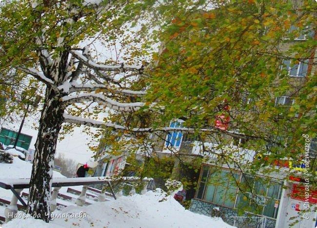 Прошлая осень закончилась рано и трагично.  фото 1