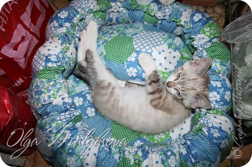 Лежаночка для кошки фото 4