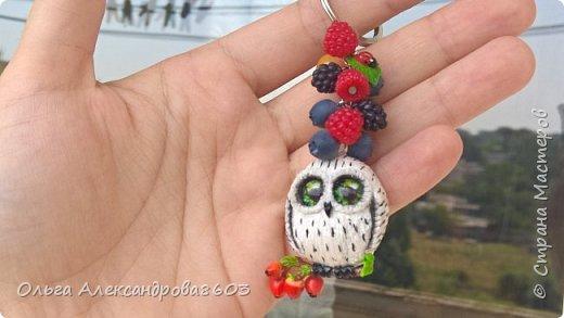 Полярная сова,с ключиком в лапках)))! фото 3
