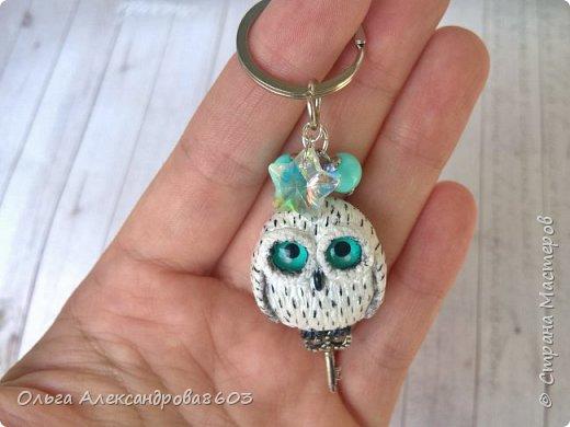 Полярная сова,с ключиком в лапках)))! фото 1