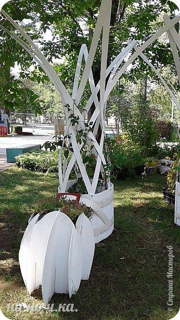"""Всем добрый день!!!  Сегодня я вам предлагаю прогуляться по ВВЦ. Я была на выставке """" Сады и люди"""". Он находится около павильона №75. Территория не очень большая, но очень много красиво созданных уголков... В корзине маленькие поросята, или кабанята))) фото 13"""
